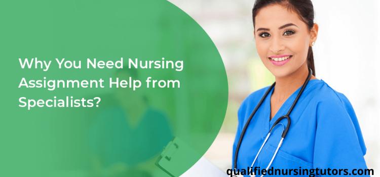 cheap online nursing assignment help website